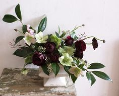 Winter centerpiece with Hellebores and ranunculus