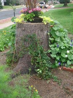 Louise Sanchez / Herbs Crafts Gifts: Pine Tree Stump as a Planter