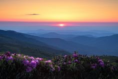 https://flic.kr/p/WmmkFN | Searching...  Roan Mountain Sunset, Grassy Ridge Bald, North Carolina | Happy 4th of July to all my stateside friends!  This is another shot from my early June trip to Roan Mountain.  I was camping in the saddle but wanted to venture back over on Grassy Bald to see if I could find any decent sort of composition from up there.  I should have been looking a little harder on my way in as this was about all I could find in my scramble back down and off the trail a bit…
