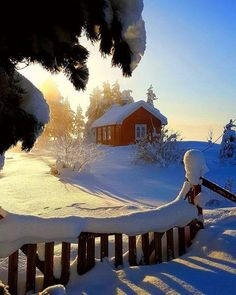 Winter Magic, Winter Snow, Winter Time, Winter Christmas, Winter Pictures, Nature Pictures, Winter Schnee, Snow Scenes, Winter Beauty
