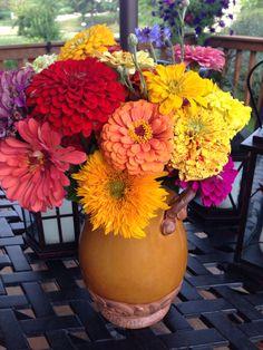 Zinnias from my iowa garden – as bright as candy! Zinnias, Iowa, Bright, Table Decorations, Garden, Candy, Girls, Home Decor, Toddler Girls