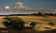 Toscana, Italy. photo by Andrea Lorenzetti