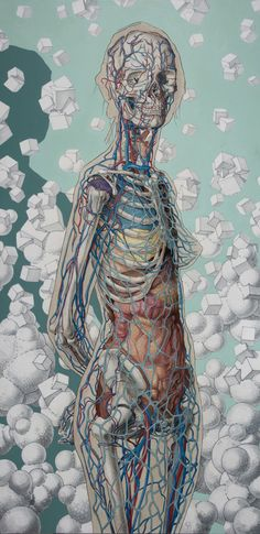 Michael Reedy - this piece focuses on exposing the human body and perhaps enabiling the viewer to see the complexity and beauty of it. The beige silhouette shows us that the subject is a woman and the colours used suggest calmness and tranquility. However the actual foreground of the piece can seem a bit morbid as all internal organs, veins and bones are being exposed. There is order in each of our bodies - in the sense that everything is build in a specific area for a reason.