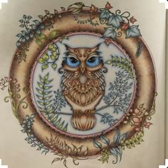 Top demais essa coruja Secret Garden Coloring Book, Coloring Book Art, Colouring Pics, Adult Coloring, Enchanted Forest Book, Enchanted Forest Coloring Book, Joanna Basford, Johanna Basford Coloring Book, Colored Pencil Techniques