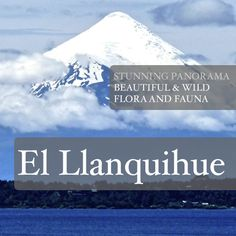 #llanquihue #lagollanquihue #patagonia #chile #puertovaras #beach #panorama #volcano #osorno Patagonia, Bucket List Destinations, Flora And Fauna, Volcano, Places To Visit, Spaces, Beach, Nature, Travel