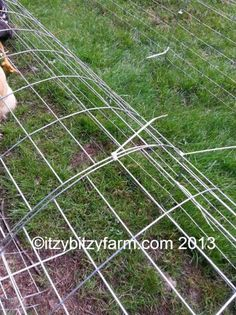 Safe Free Ranging Using Chunnels Chicken Fence, Chicken Garden, Building A Chicken Coop, Chicken Runs, Chicken Houses, Chicken Coops, Clean Chicken, Chicken Wire, Keeping Chickens