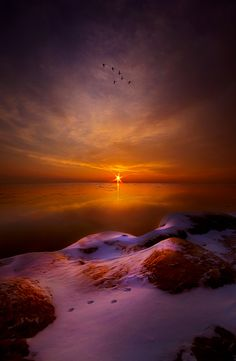 ~~For All That Came Before ~ inspirational gold and violet sunrise on a snowy winter horizon, Wisconsin by Phil-Koch~~ Beautiful World, Beautiful Places, Beautiful Pictures, All Nature, Amazing Nature, Art Soleil, Landscape Photography, Nature Photography, Canon Photography