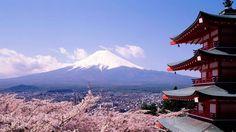 Dónde alojarse en Tokio: las mejores zonas para dormir (Japón)