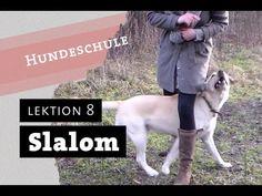 SLALOM - Wie bringe ich meinem Hund bei durch die Beine zu laufen Trick ... Dog Hacks, Shiba Inu, Dog Love, Dog Training, Animals And Pets, Best Dogs, Puppies, Merlin, Boss