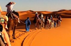 This 4 days trip from Marrakech to Merzouga Desert is a perfect choice if you wish to enchant your senses with a longer experience in the Sahara. Cross the High Atlas Mountains, visit Ksar Ait Ben Haddou and Todra Gorge, camel trek across Merzouga Desert and hop on the 4x4 off road car for a desert safari to remember. Watch out for desert foxes!