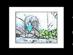 Frank Barton - Kodiak Island Instrumentals - Volume 12