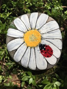 This lovely daisy with ladybug painted stone is a wonderful way to welcome Spring and Summer! With beautiful white petals and a cute ladybug, this flo. Daisy Painting, Pebble Painting, Pebble Art, Stone Painting, Ladybug Rock Painting, Rock Painting Patterns, Rock Painting Ideas Easy, Rock Painting Designs, Paint Ideas