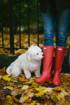 Red Rain Boots - The Londoner Red Rain Boots, Rain Boots Fashion, Wellies Rain Boots, Hunter Rain Boots, Cowgirl Boots, Western Boots, Riding Boots, Hunter Boots Outfit, Timberland Style