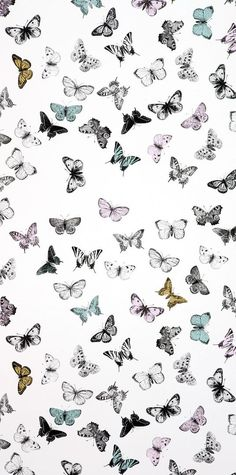 Tapet Butterfly White/Multi - Mimou