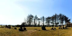 The Rollright Stones Image