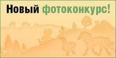 Каша из семян амаранта   Кулинарные рецепты от «Едим дома!»