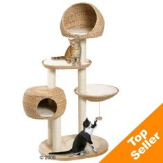 Open play space, hiding places, scratching area, and hanging strings=perfect play house for cats!