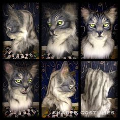 Tabby Cats Grey Grey tabby cat by Cat Fursuit, Grey Tabby Cats, Famous Cartoons, Cat Climbing, Cosplay Costumes, Top Cosplay, Cat Face, Cat Breeds, Mascaras