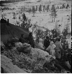 Ensin suomalaissotilas teloitti vangitun naisradistin, sitten eversti antoi tyrmistystä herättäneen käskyn – uutuuskirja kertoo rajusta tapauksesta jatkosodassa - Kotimaa - Ilta-Sanomat