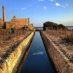 Uno scorcio dell' oasi faunistica di Vendicari Siracusa - ph. aperdichizzi