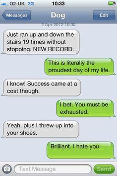 Dog Text I laughed way to hard at this.