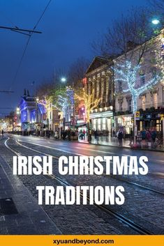 Dublin Travel, Ireland Travel, Travel Advice, Travel Guides, Irish Christmas Traditions, Visit Dublin, Ireland Landscape, Cities In Europe, Republic Of Ireland