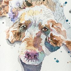 Id love to paint your pet! We all love our pets, and what better way to honour them by having a gorgeous painting that you can treasure forever and look at every day. Lets get started... All I need is for you to send me a photo and I will create a custom painting of your pet using watercolour and ink, which is then signed by me. This listing is for A4 size. I package all artwork in a cellophane wrapper to protect it from water damage and then it is carefully sealed in a board-backed…