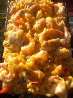 Sunset Shrimp Grilled Chicken and Crab Macaroni and Cheese!