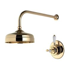 "Aqualisa - Aquatique Thermo Concealed Thermostatic Valve with 8"" Drencher Head & Arm - Gold - 500.00.04-580.04 profile large image view 1"