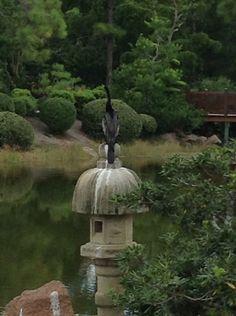 Morikami Museum and Japanese Gardens Delray, FL