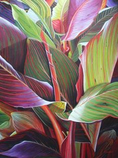 Canna - Waiting to Unfurl - x - Acrylic on Canvas Tropical Art, Tropical Leaves, Watercolor Flowers, Watercolor Art, Abstract Flower Art, Bamboo Art, Nature Drawing, Leaf Art, Pictures To Paint