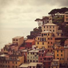Cinque Terre Italy Photograph, Houses, Autumn Colors, Dreamy,... ($30) ❤ liked on Polyvore featuring backgrounds, pictures, photos, pics, buildings, fillers, quotes, phrase, doodle and saying