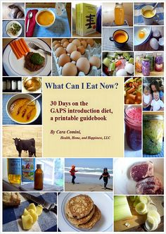 GAPS Diet Intro--don't go on it without this incredible book. Makes organization and planning your meals  MUCH easier!