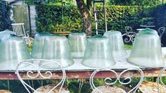 French garden cloches Follow us on Instagram