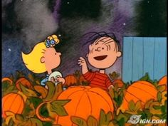 It's the Great Pumpkin, Charlie Brown.  No fall is complete without this movie.