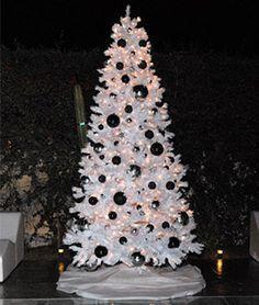 image result for white christmas tree black ornaments christmas tree sale white christmas trees - White Christmas Tree Ornaments