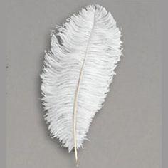 1 LB Ostrich Drabs (approx 250 feathers) $425 per lb, #centerpieces, #weddings, ostrich feathers, ostrich feather centerpieces