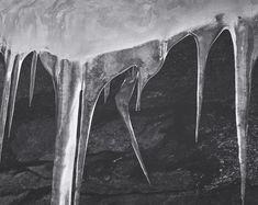 Center for creative photography. Ansel Adams lesson plans including discussing and interpreting photographs. Icicles, Yosemite by Ansel Adams Ansel Adams Photography, Line Photography, Photography Lessons, Photography Camera, Creative Photography, Black And White Landscape, Black N White Images, Sierra Nevada, Great Photographers