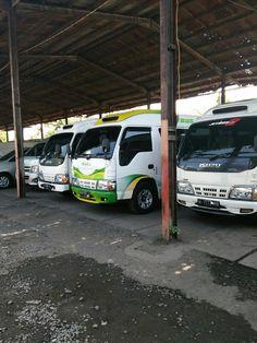 Rental Mobil Murah Surabaya: SEWA MOBIL SURABAYA