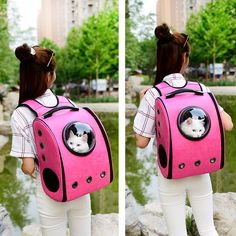 b49e27b2376 Cheap backpack cartoon, Buy Quality window shop directly from China backpack  blue Suppliers: Pet Space Capsule Astronaut Cat Carrier Backpack Bubble  Window ...