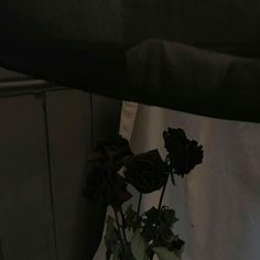 New post on baby-im-your-heroin Aesthetic Roses, Black Aesthetic Wallpaper, Night Aesthetic, Black And White Aesthetic, Aesthetic Colors, Aesthetic Images, Aesthetic Grunge, Aesthetic Photo, Aesthetic Wallpapers