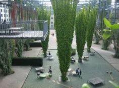 Image result for mfo park