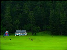 If you have not seen the Switzerland yet because going to Switzerland is very expensive then don't worry there is a place called khajjiar in himachal pradesh(India).