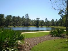 Spring fed lake surrounded by nature trails and large home sites at Churchill Oaks