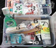The Crafty Scientist: DIY Car Essentials Box (picture)