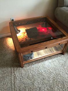 Coffee TableTerrariumLeopard Geckos For Sale In Springville - Terrarium coffee table for sale