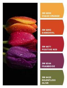 Color Schemes Colour Palettes, Colour Pallette, Color Palate, Color Combinations, Orange Color Schemes, Couleur Html, Design Seeds, Color Stories, Color Swatches