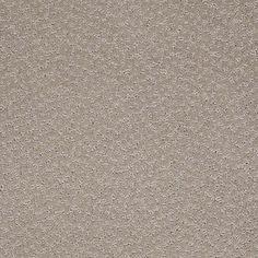Color: 00901 Oxford CCS20 Capellini - Shaw Caress Carpet Georgia Carpet Industries