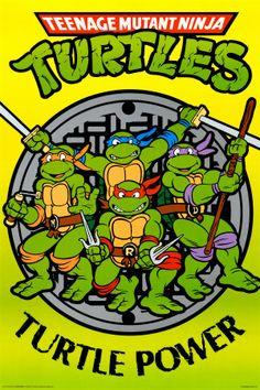 Teenage Mutant Ninja Turtles... Who thinks of this stuff?  Obsessed as a kid.