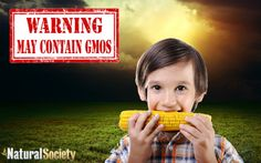 One of the largest studies to date has found a dramatic increase in inflammatory bowel conditions in children in the last decade, likely due to eating GMOs.